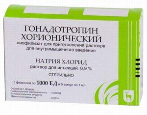 Как колоть хорионический гонадотропин