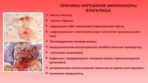 Нарушение микрофлоры у женщин симптомы лечение препараты