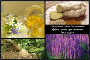 Лечение бесплодия травами