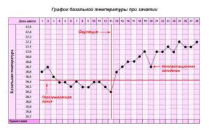 Базальная температура в течение дня