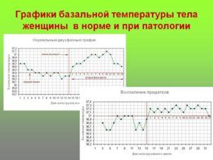 Ректальная температура норма у женщин