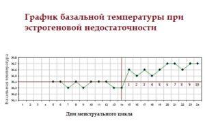 Температура при климаксе у женщин