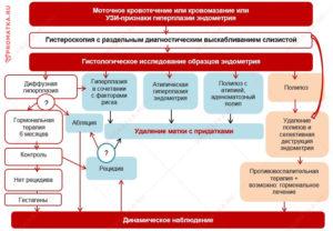 Лечение гиперплазии эндометрия дюфастоном