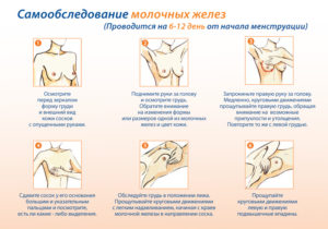 Почему болит грудь перед месячными